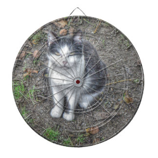 The Cat Dartboard With Darts