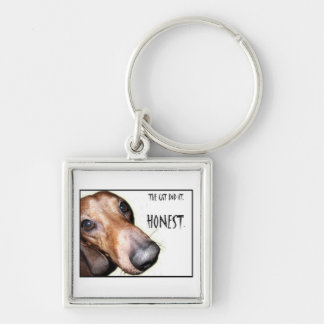 The Cat Did It Dachshund Doxie Key Chains