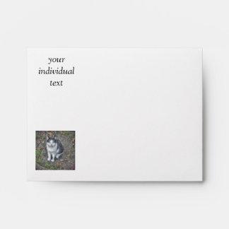 the cat envelope