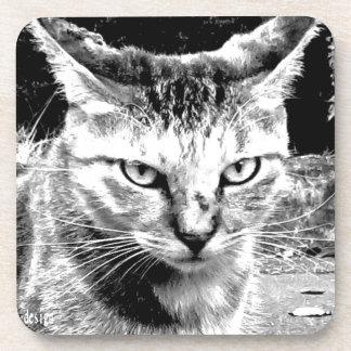 the cat eyes 2016 tokyo modern art cosmo art jpn beverage coaster
