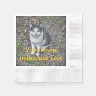 the cat paper napkins
