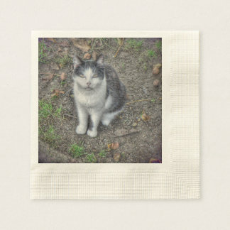 the cat disposable napkin