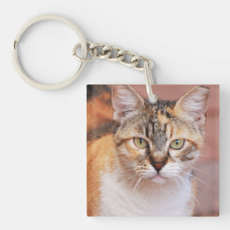 The Cat Portrait Square Acrylic Keychain