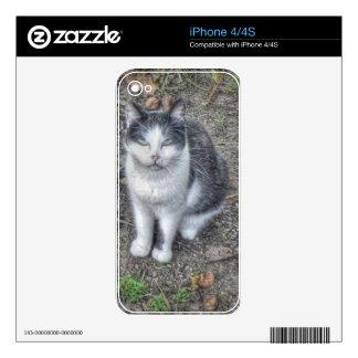 The Cat iPhone 4S Decals