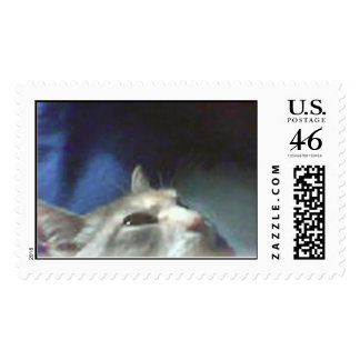 the cat with extra terrestrial eyes stamp