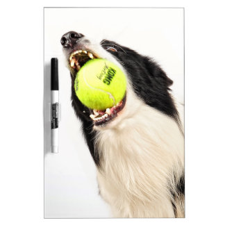 The Catch Dry Erase Whiteboard
