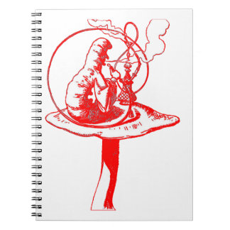 The Caterpillar in Red Notebook