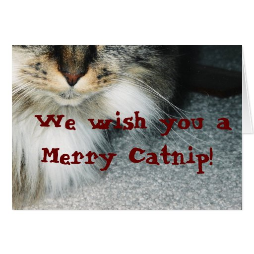 The Catnip Papers: Catnip Greeting Card
