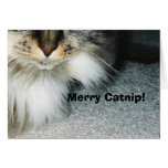 The Catnip Papers Greeting Card: Merry Catnip!