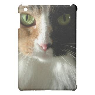 The Cat's Eyes iPad Mini Cover
