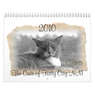 The Cats of Kitty City NM, 2011 Calendars