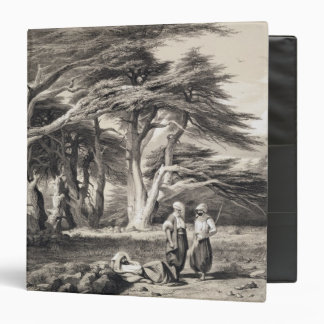 The Cedars of Lebanon, engraved by Freeman (sepia Vinyl Binder