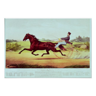The Celebrated Horse, George M. Patchen Poster
