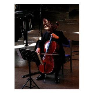 The cellist post card