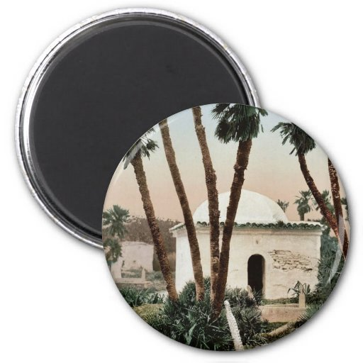 The cemetery, with chapel, Algiers, Algeria vintag Refrigerator Magnet
