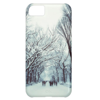The Central Park Mall In Winter iPhone 5C Case