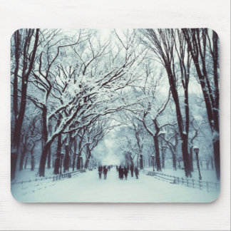 The Central Park Mall In Winter Mouse Pad