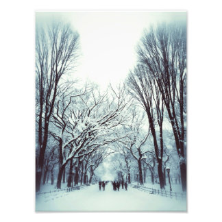The Central Park Mall In Winter Photo Art
