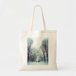 The Central Park Mall In Winter Tote Bag