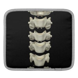 The Cervical Vertebrae 7 iPad Sleeves