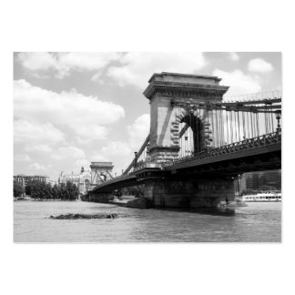 The Chain Bridge in Budapest, Hungary Business Card Templates