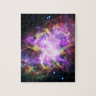The Chandra X-ray in the Crab Nebula Jigsaw Puzzle