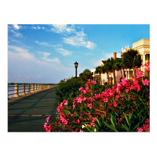 The Charleston Battery Postcard