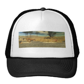 The Chase Trucker Hat