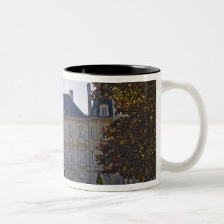 The Chateau Pichon Longueville Baron and pond Two-Tone Coffee Mug