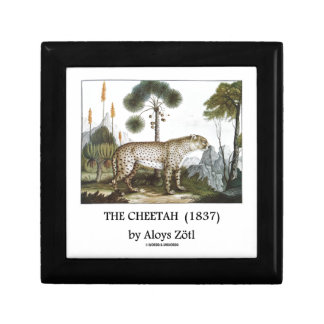 The Cheetah (1837) by Aloys Zötl Gift Box