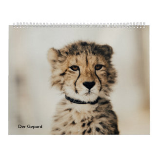 The cheetah calendar