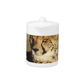 The Cheetah Teapot