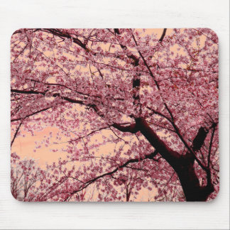 The Cherry Blossom Tree Mousepads