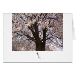 The cherry tree in Japan 1 Card