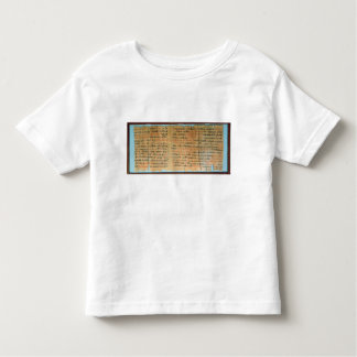 The Chester Beatty Medical Papyrus Toddler T-shirt