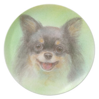 The chi wa cup which it does and is defeated dinner plate