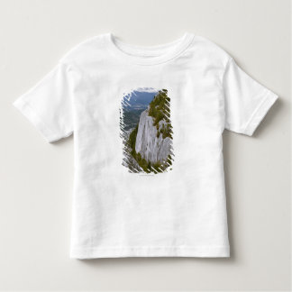 """The """"Chief"""" Arial View in Squamish Toddler T-shirt"""