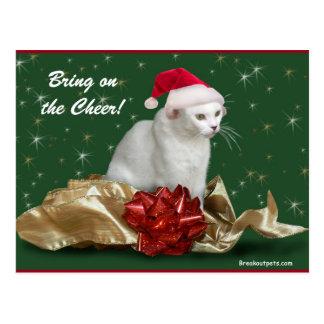 The Christmas Cat Postcard