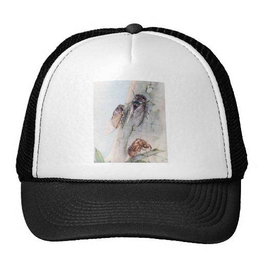 THE CICADA 2 TRUCKER HAT