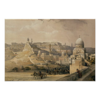 """The Citadel of Cairo, from """"Egypt and Nubia"""" Posters"""