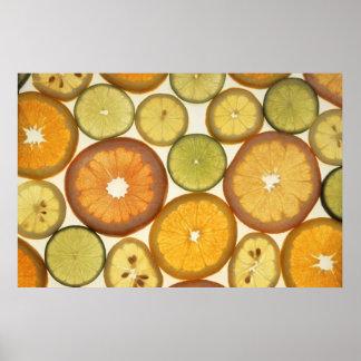 The Citrus Design Print