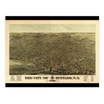 The City of Buffalo New York (1880) Postcard