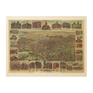 The City of Los Angeles California in 1891 Wood Wall Art