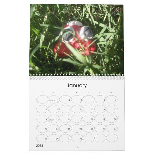 The Clay Pal Calendar
