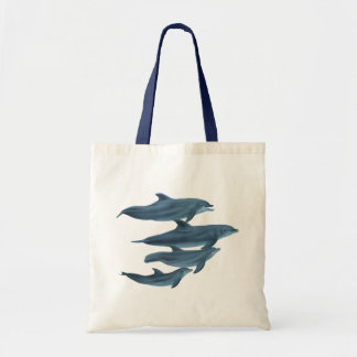 The Clearwater Dolphins 2 Bag