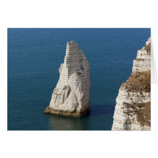 The coast at the Aval cliffs of Etretat Card
