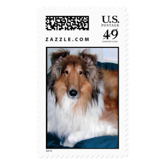 The Collie Postage Stamps