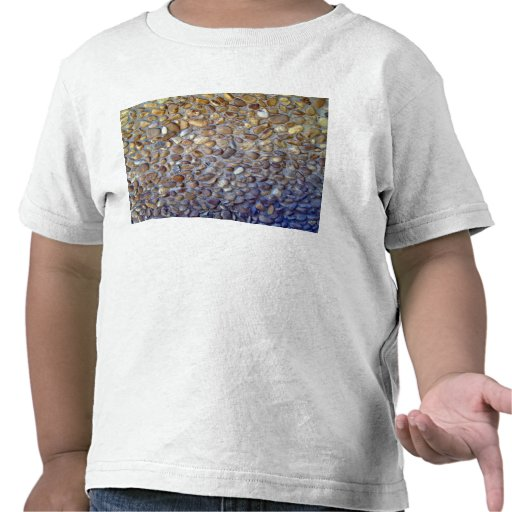 The Colorful Pebble Pavement Footpath Tshirt