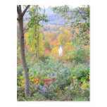 the colors of a mountain fall post card