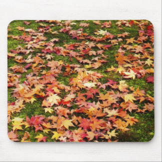 The colors of fall mouse pad